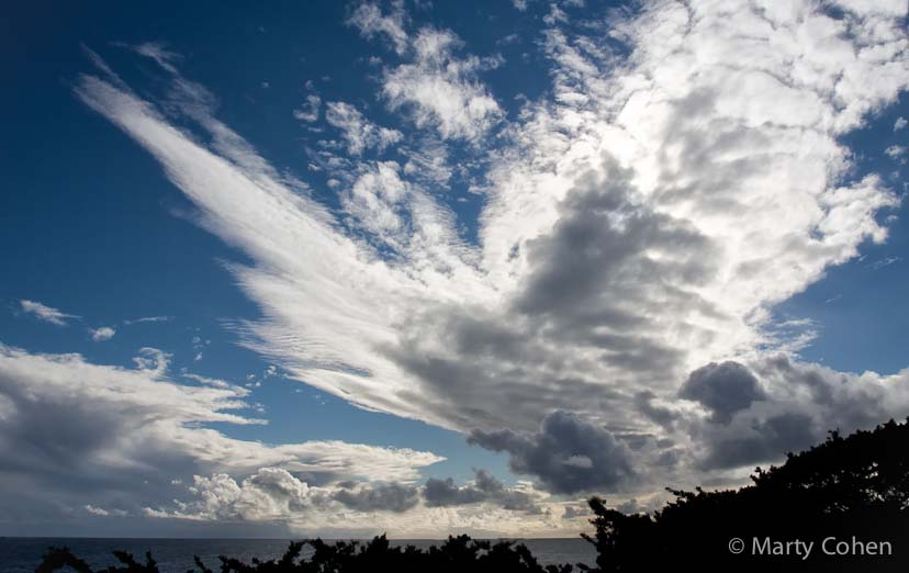 Clouds With Wings