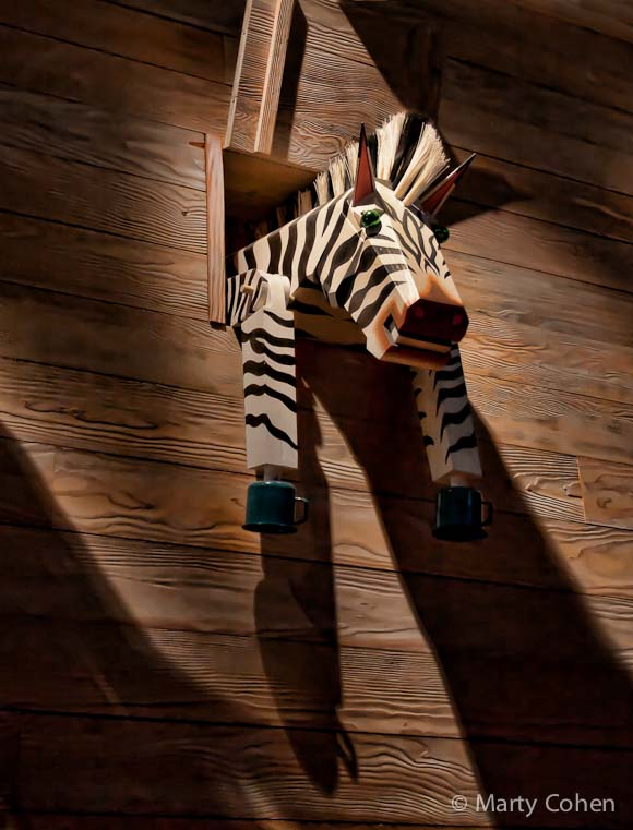 Zebra at the Skirball