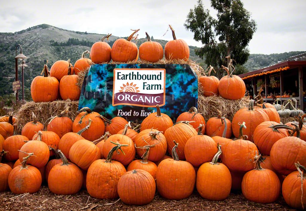 Earthbound Farm Pumpkins