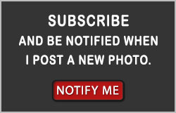Subscribe and be notified of new images