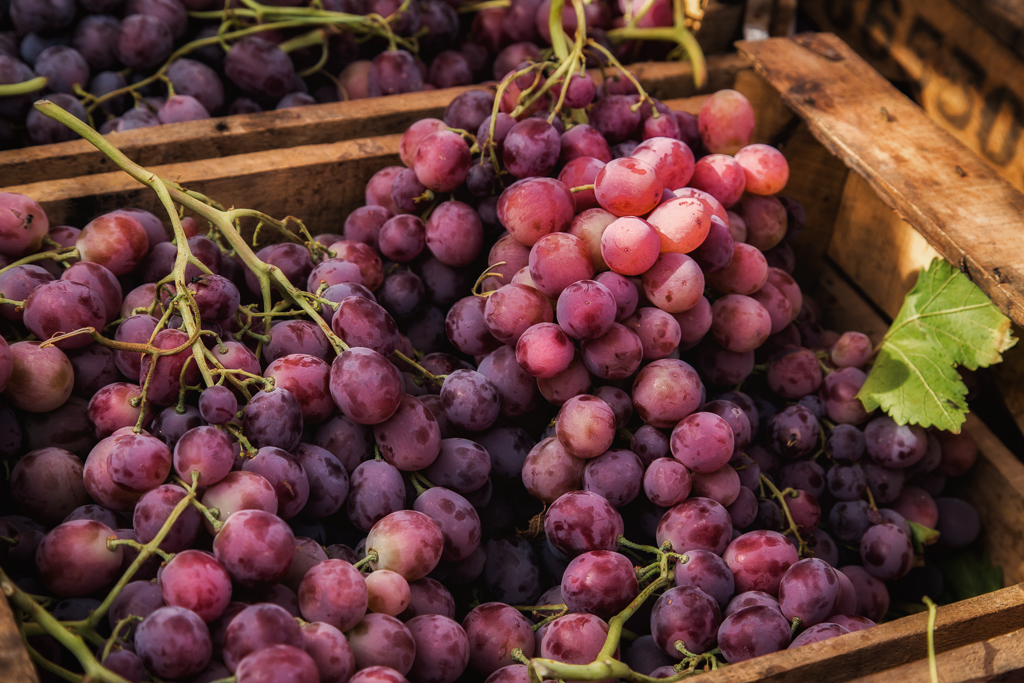 Grapes at the Roadside Marketplace
