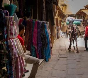 Mule in the Medina