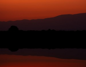 Sunrise at Sweetwaters, Kenya