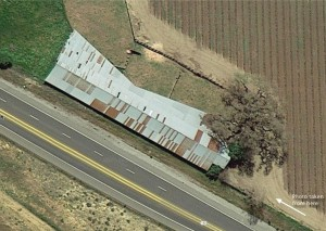 California Oak and Barn from above