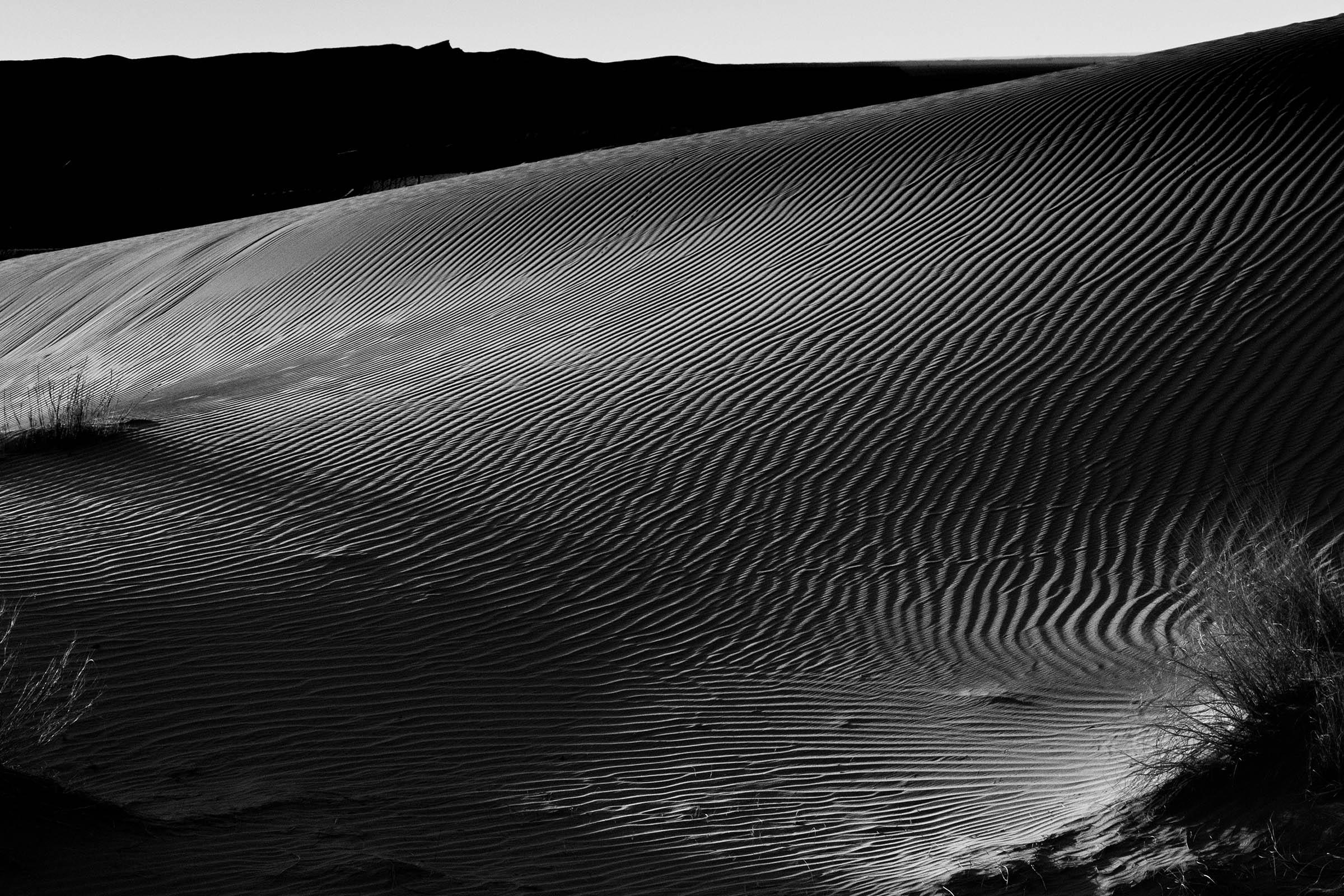 Sahara Sunrise and Shadows